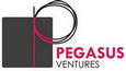 Pegasus Ventures Web Design App and Development  Designer Logo