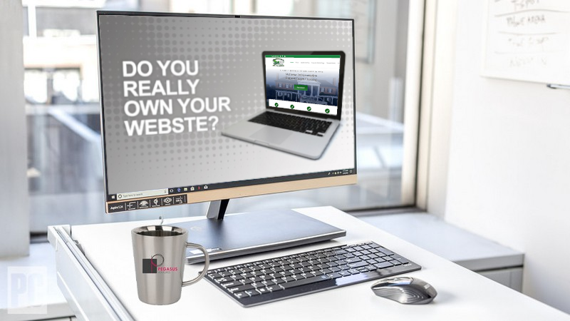 Do you own your website?