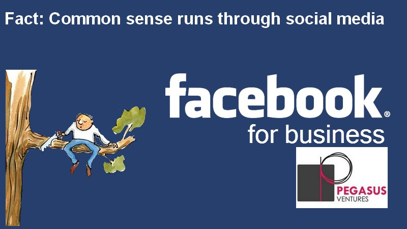 Fact: Common sense runs though successful social media