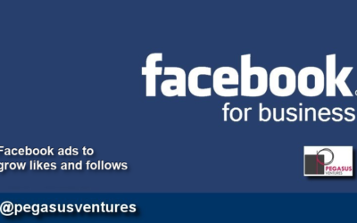 Facebook Ads: Get new followers and likes for your business Facebook page